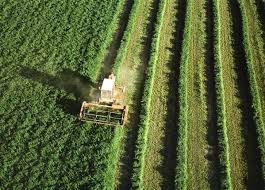 Los sindicatos se emplazan al día 28 de mayo para continuar el proceso negociador con las organizaciones agrarias