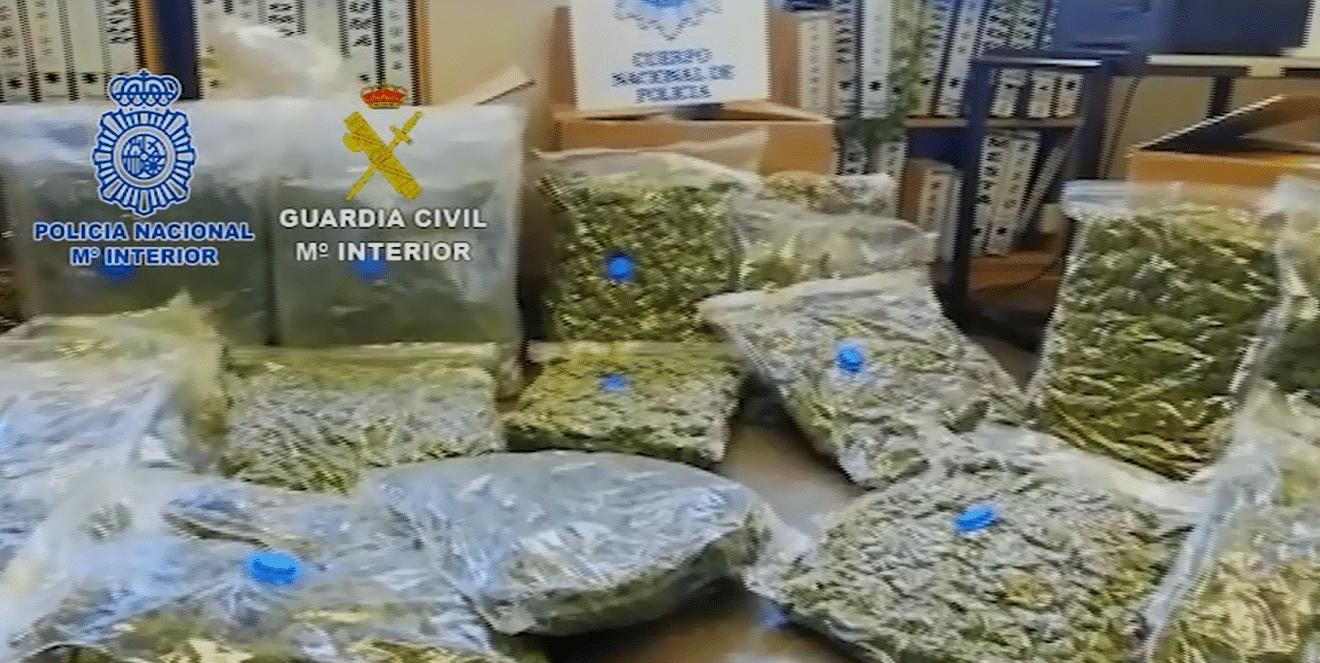 Desarticulada una organización china dedicada al cultivo de marihuana para su exportación y venta a traficantes europeos
