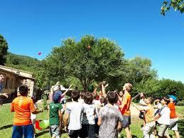 A partir del 30 de junio 933 jóvenes de entre 10 y 30 años participarán en alguna de las actividades de la Campaña de Verano 2019