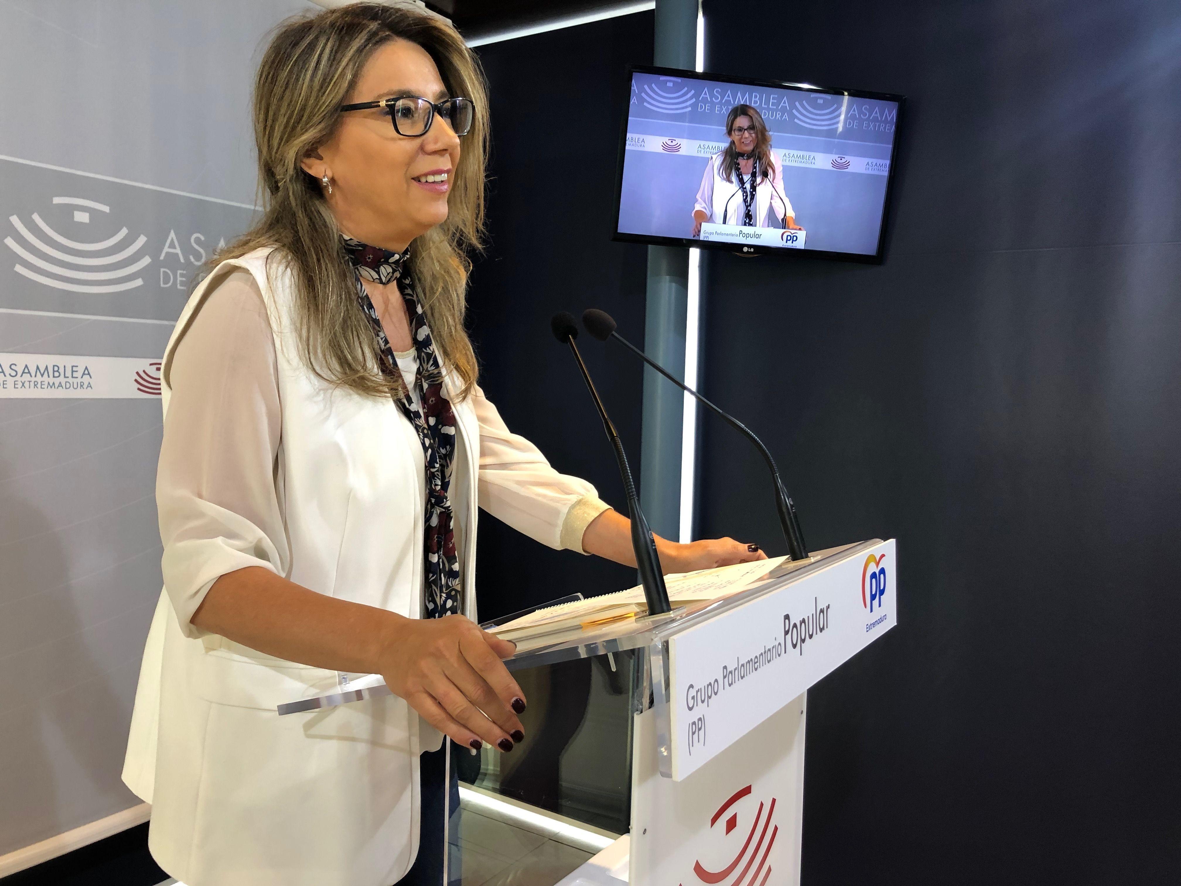 Teniente, PP: El PSOE sirve de parapeto para que la Junta no informe sobre la gestión de las residencias