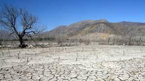De Miguel, Unidas por Podemos: Es urgente que se declare la emergencia climática en Extremadura