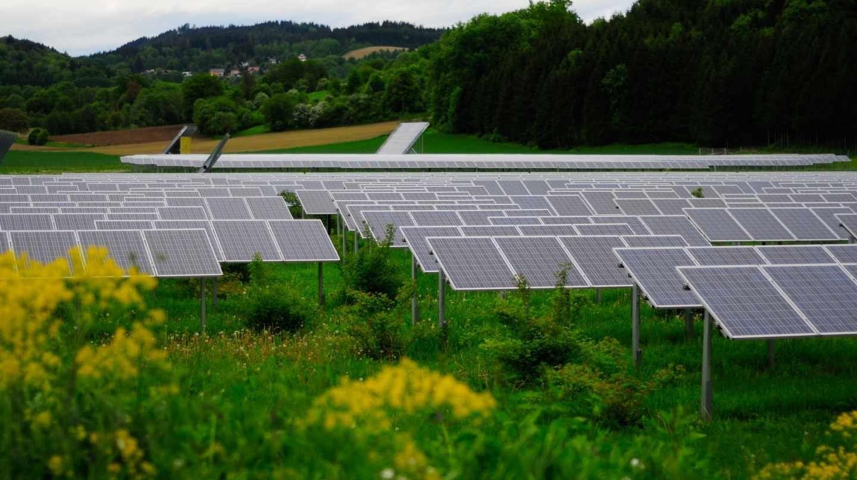 La Junta de Extremadura contratará el cien por cien de la energía eléctrica verde para sus instalaciones