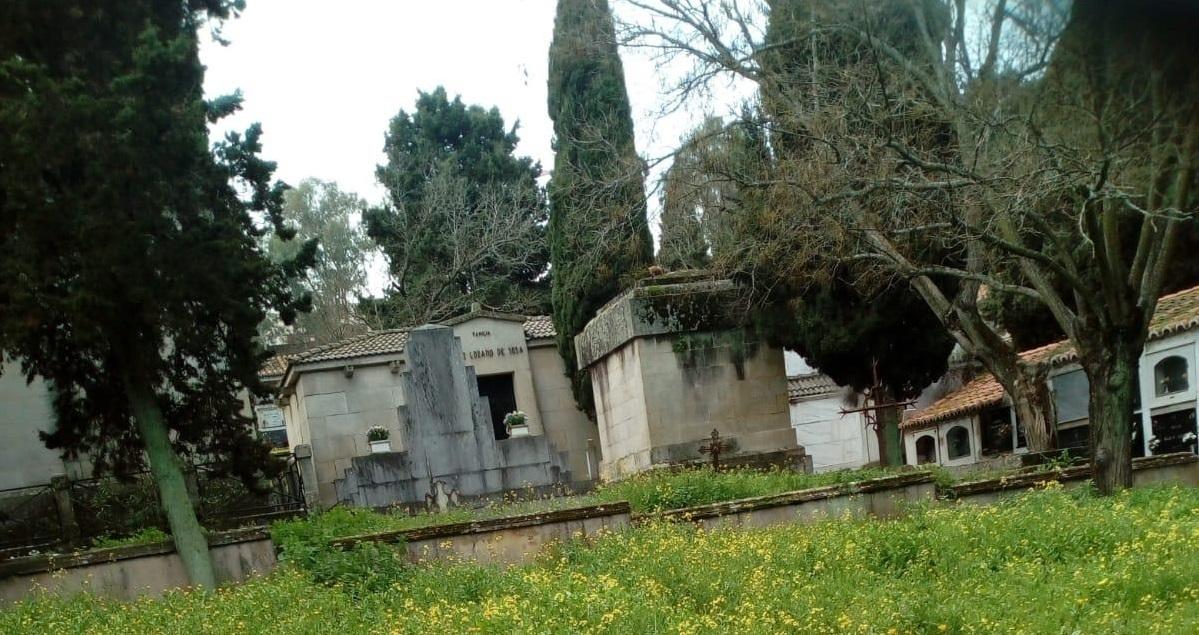 Ciudadanos denuncia el estado del cementerio municipal de Cáceres
