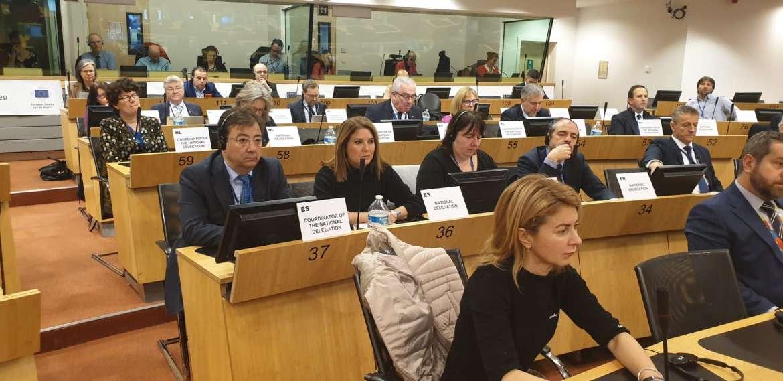 Vara aboga por la defensa y el cuidado del mundo rural en el Comité de las Regiones de Europa