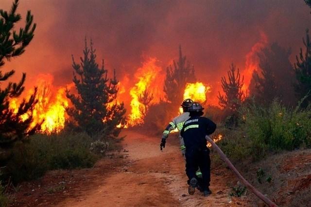 125 hectáreas calcinadas la pasada semana en Extremadura