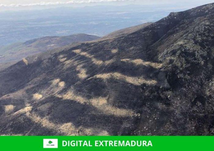 La Junta prohíbe cazar en los terrenos forestales afectados por el incendio de los Valles del Jerte y La Vera